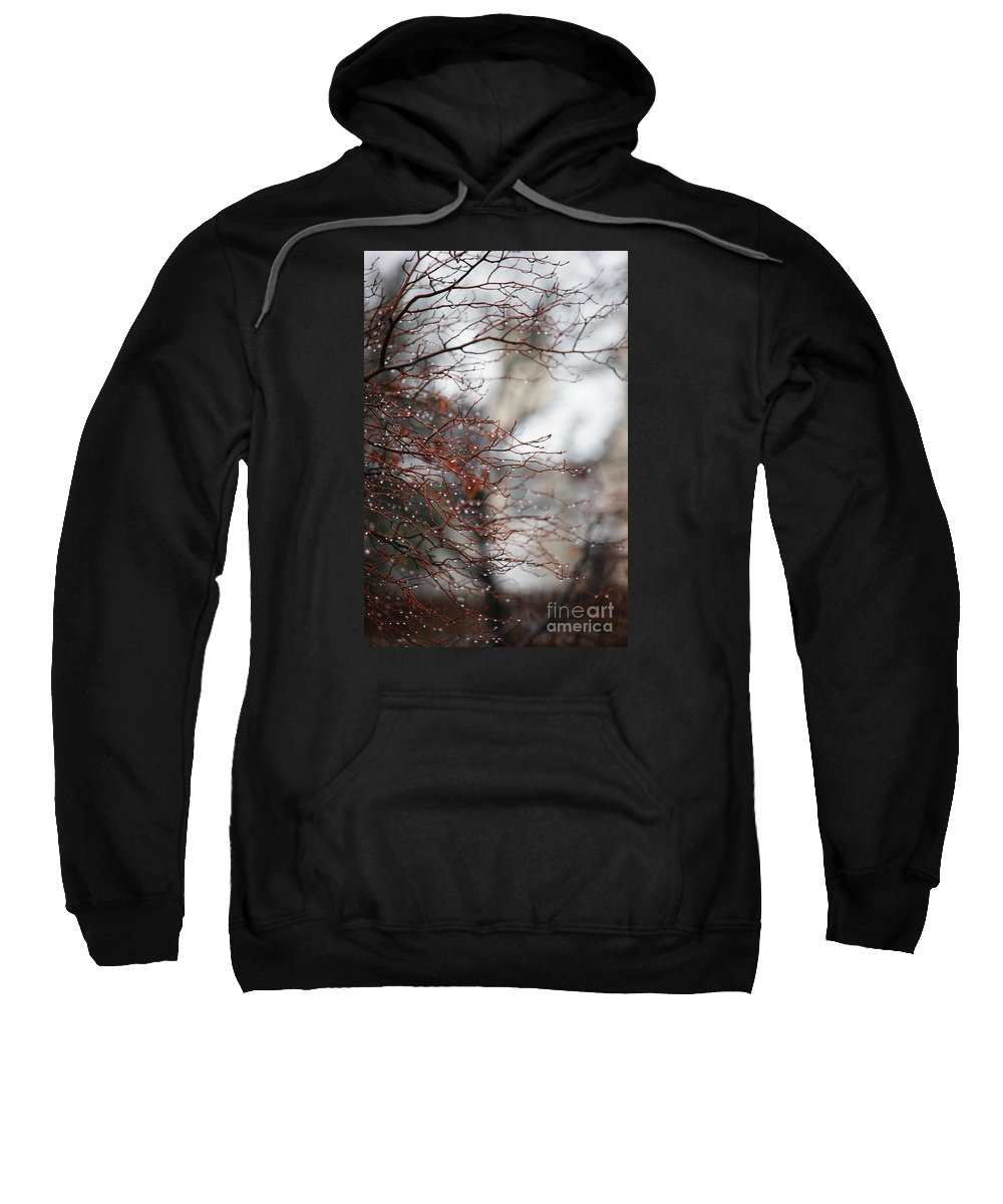 Trees Sweatshirt featuring the photograph Wintry Mix by Linda Shafer