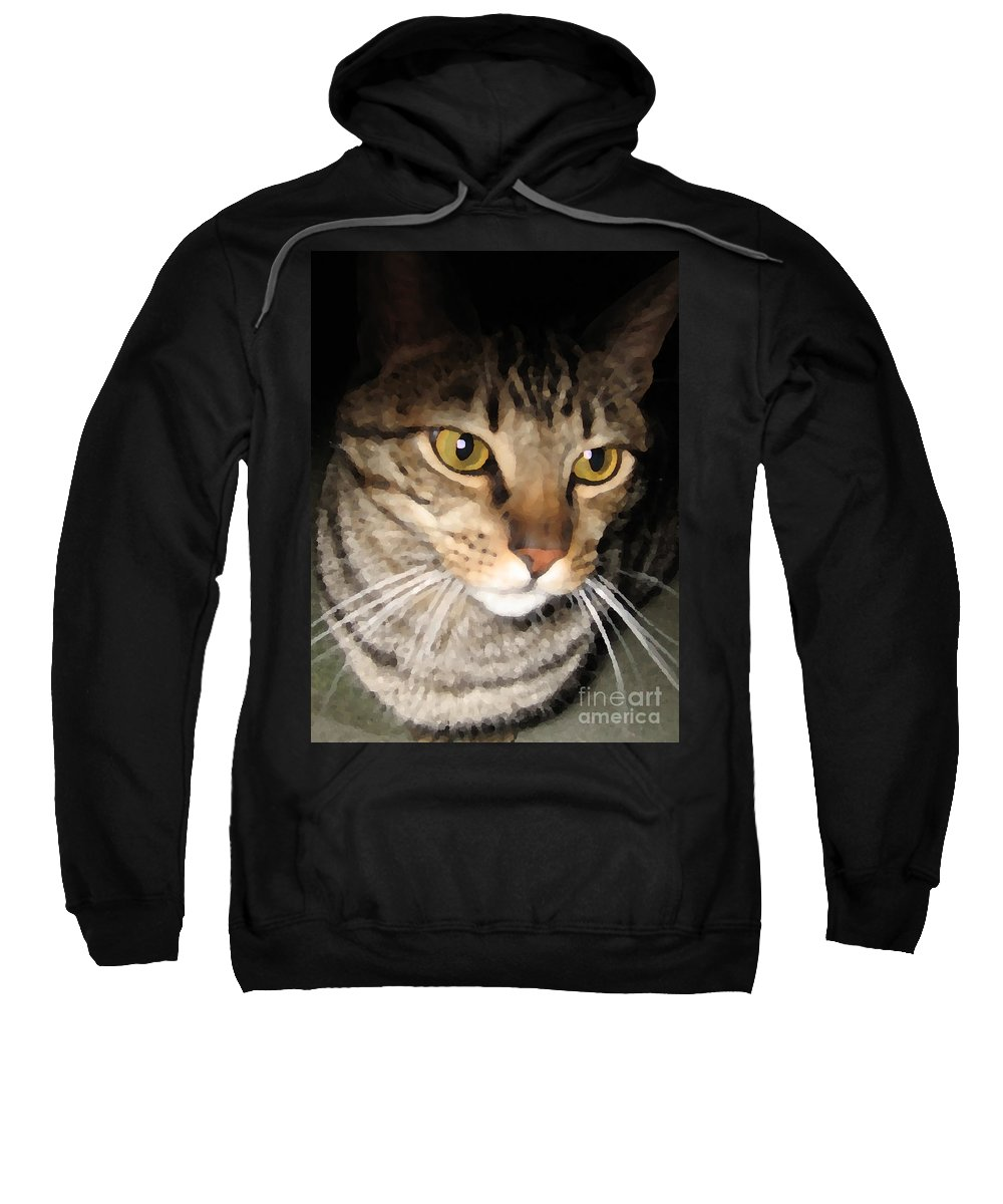 Cat Sweatshirt featuring the photograph Wise Cat by Rhonda Chase
