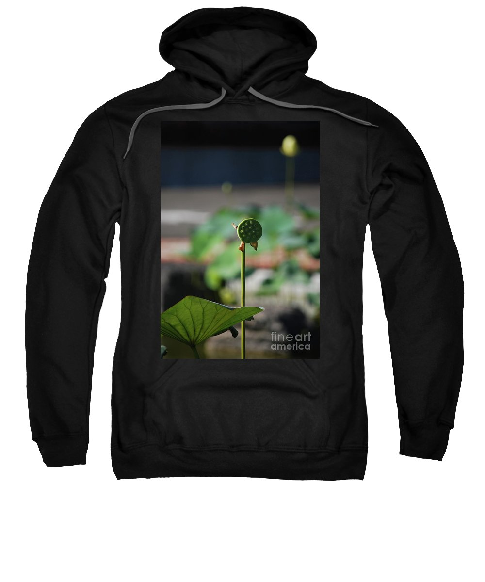 Sweatshirt featuring the photograph Without Protection Number Two by Heather Kirk