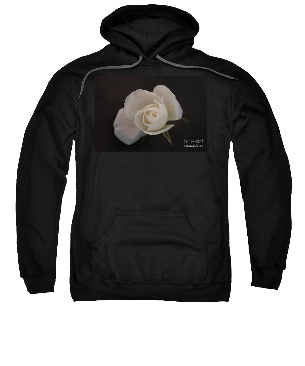 Rose Sweatshirt featuring the photograph Wonder by Shelley Jones