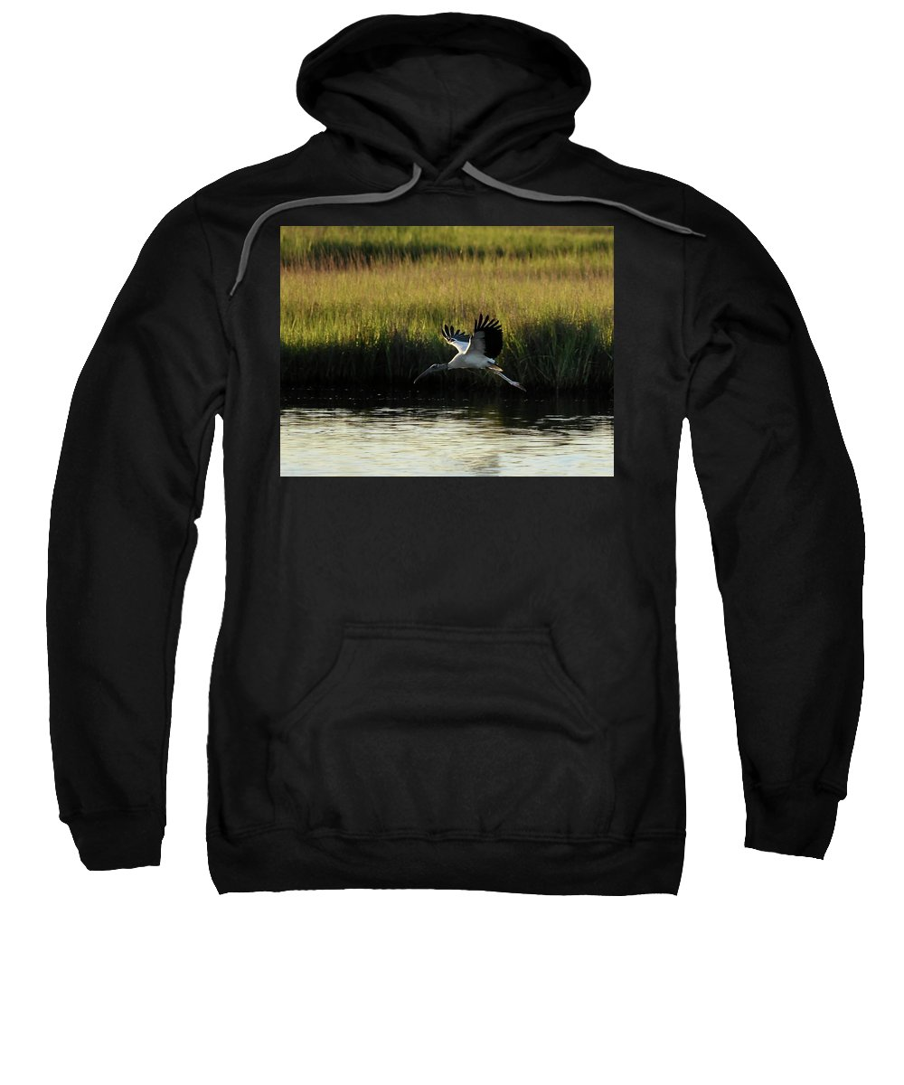 Wood Stork Sweatshirt featuring the photograph Wood Stork Winged Flight by Al Powell Photography USA