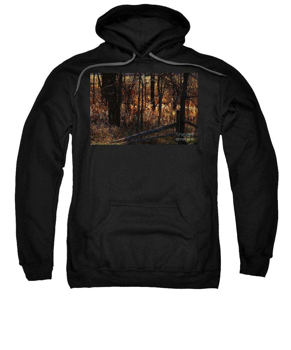 Michigan Sweatshirt featuring the photograph Woods - 1 by Linda Shafer