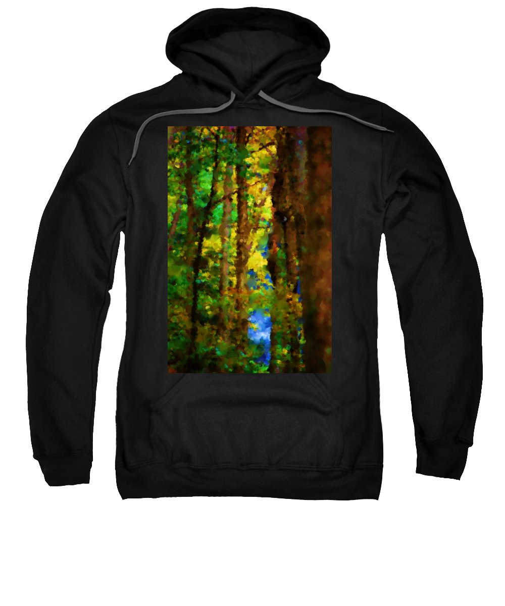 Digital Photograph Sweatshirt featuring the photograph Woods Approach To Lake by David Lane