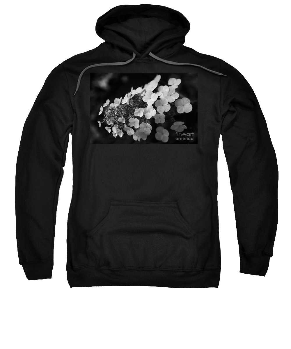 Hydrangea Sweatshirt featuring the photograph Working Together by Amanda Barcon