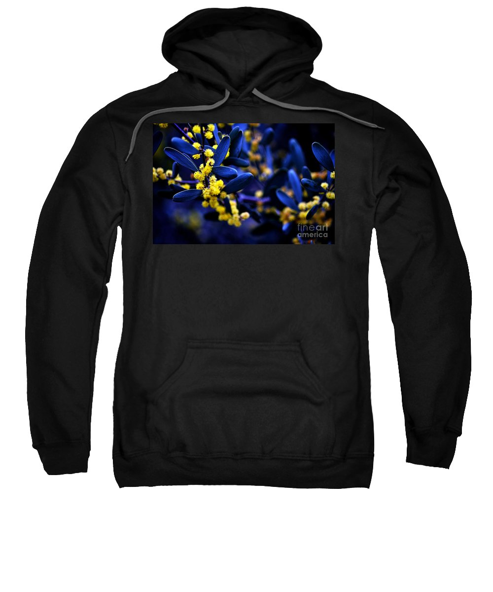 Clay Sweatshirt featuring the photograph Yellow Bursts In Blue Field by Clayton Bruster