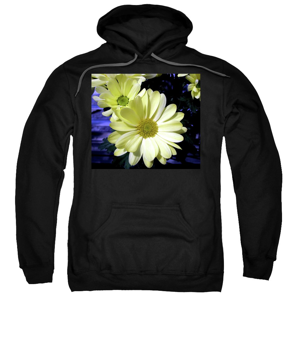 Daisies Sweatshirt featuring the photograph Yellow Daisies by Donna Brown