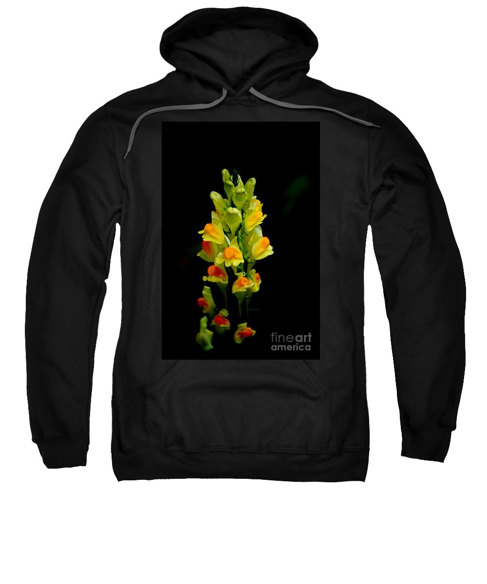 Digital Photograph Sweatshirt featuring the photograph Yellow Floral 7-24-09 by David Lane