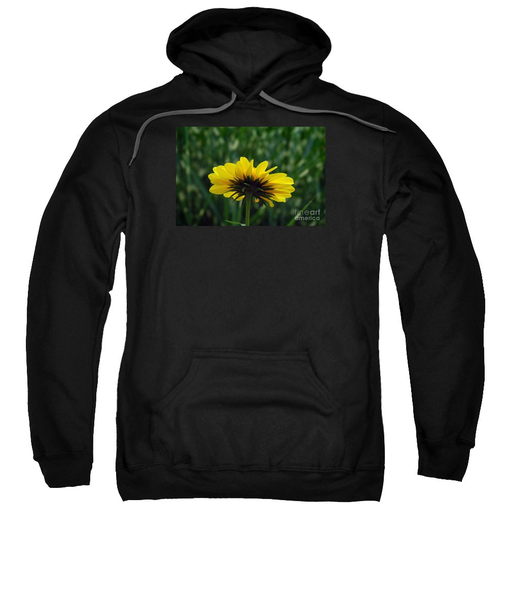 Flower Sweatshirt featuring the photograph Underside, Petals, Yellow by Michael Ziegler