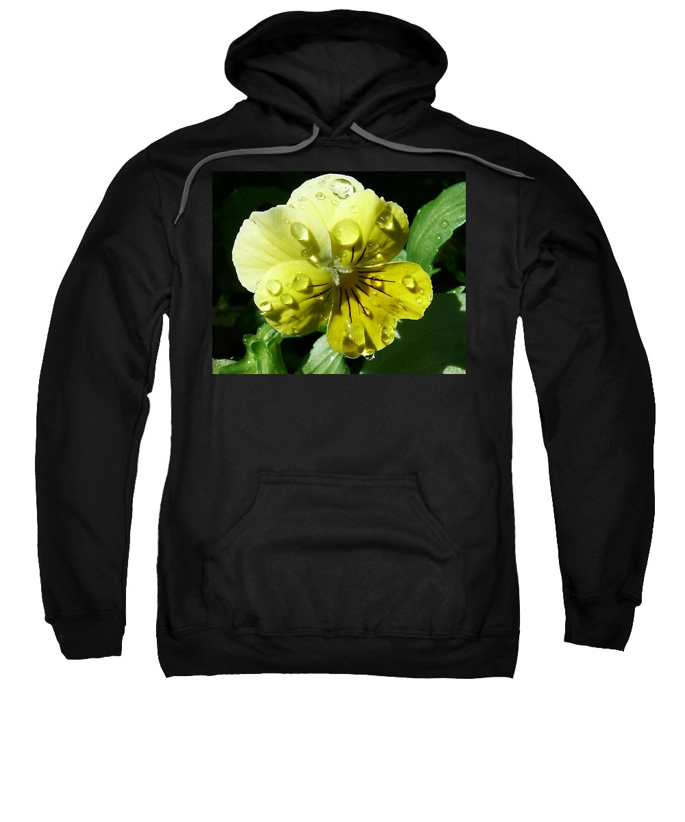 Flower Sweatshirt featuring the photograph Yellow Pansy by Anthony Jones