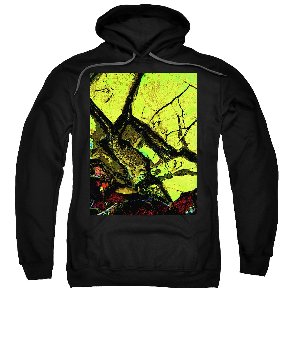 Abstract Sweatshirt featuring the photograph Yellow Sky With Dead Cedar by Lenore Senior