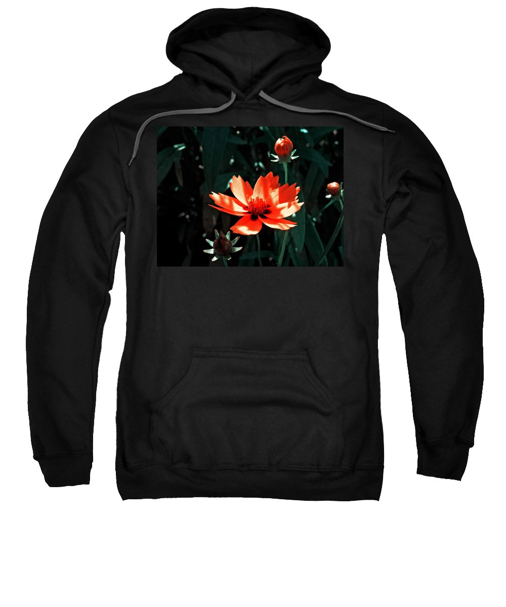 Garden Sweatshirt featuring the photograph You Are So Beautiful ... by Juergen Weiss
