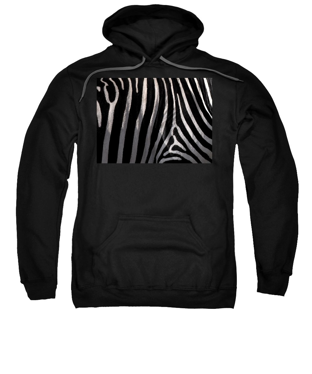 Zebra Sweatshirt featuring the painting Zebw by Are Lund