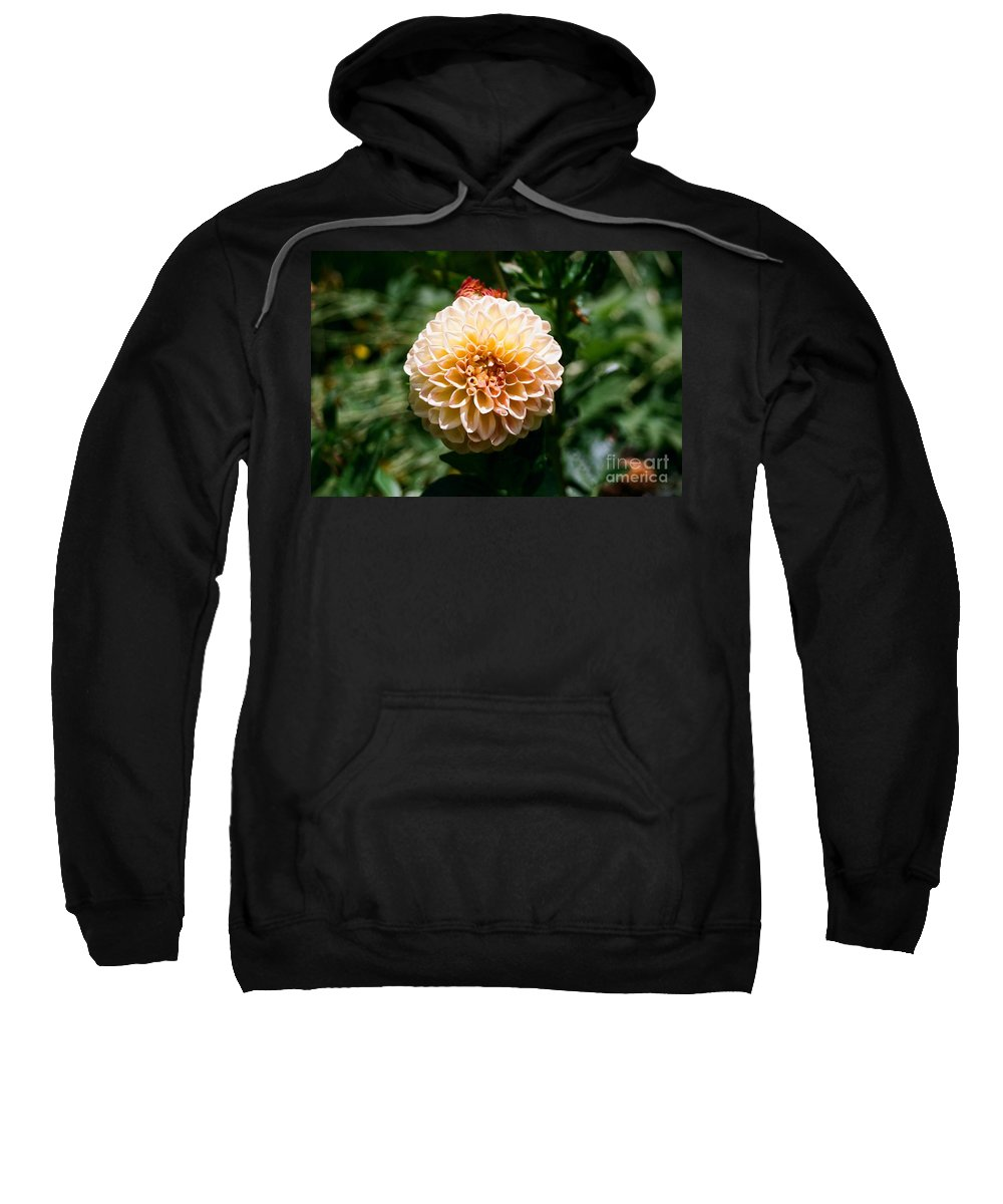 Zinnia Sweatshirt featuring the photograph Zinnia by Dean Triolo