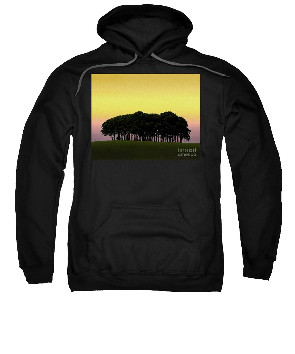 A30 Sweatshirt featuring the photograph Cookworthy Knapp by Paul Martin