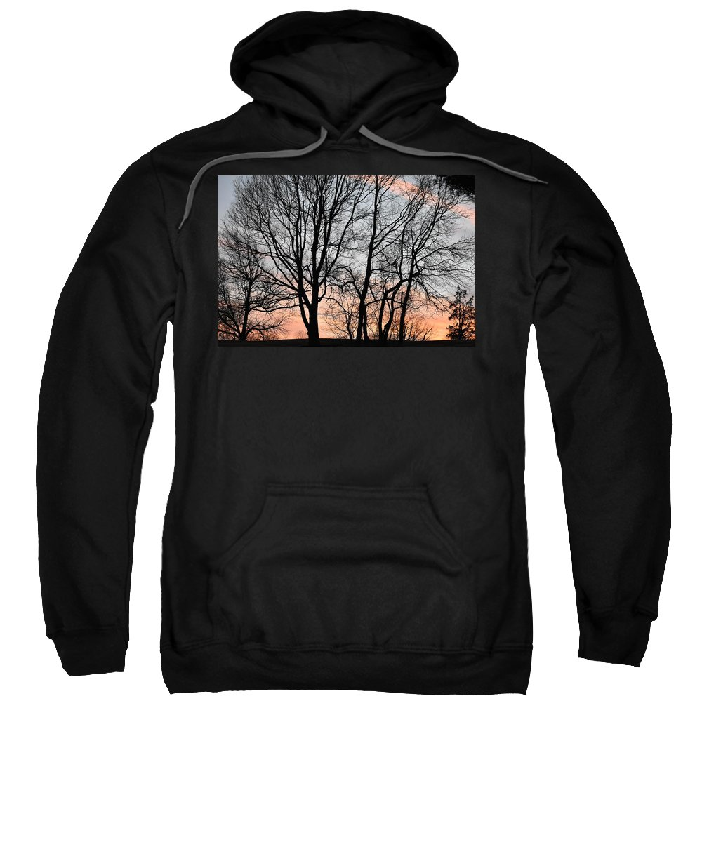 Trees Sweatshirt featuring the photograph Pink Sky by Cassidy Marshall