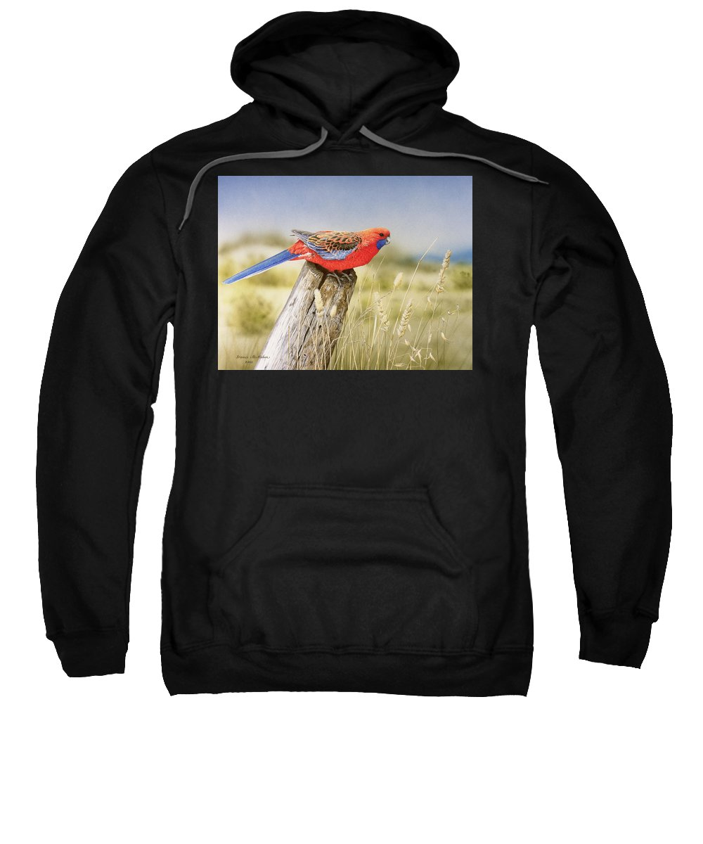 Bird Sweatshirt featuring the painting Colour and Light - Crimson Rosella by Frances McMahon