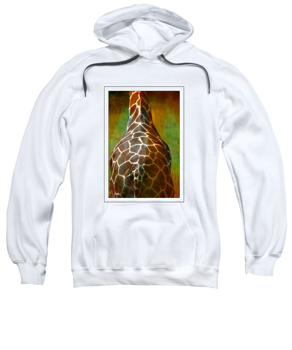 Giraffe Sweatshirt featuring the photograph Giraffe Colors by Alice Gipson