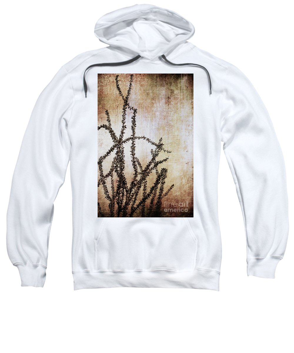 Sweatshirt featuring the photograph Indian Summer by Trish Mistric