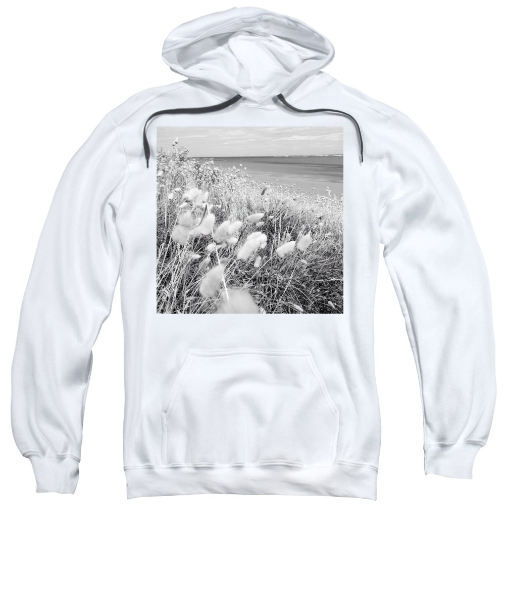 Grass Sweatshirt featuring the photograph Seaside Grass by Les Cunliffe