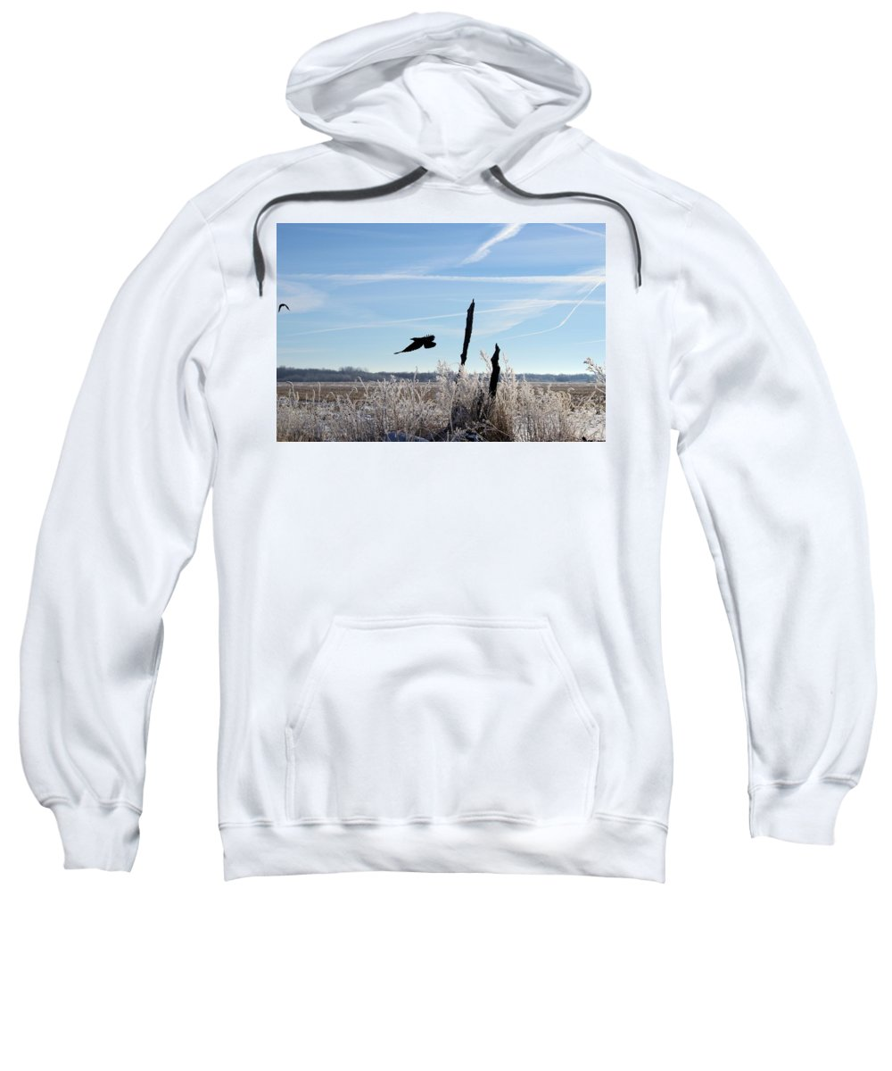Crow Sweatshirt featuring the photograph The Crow by Bonfire Photography