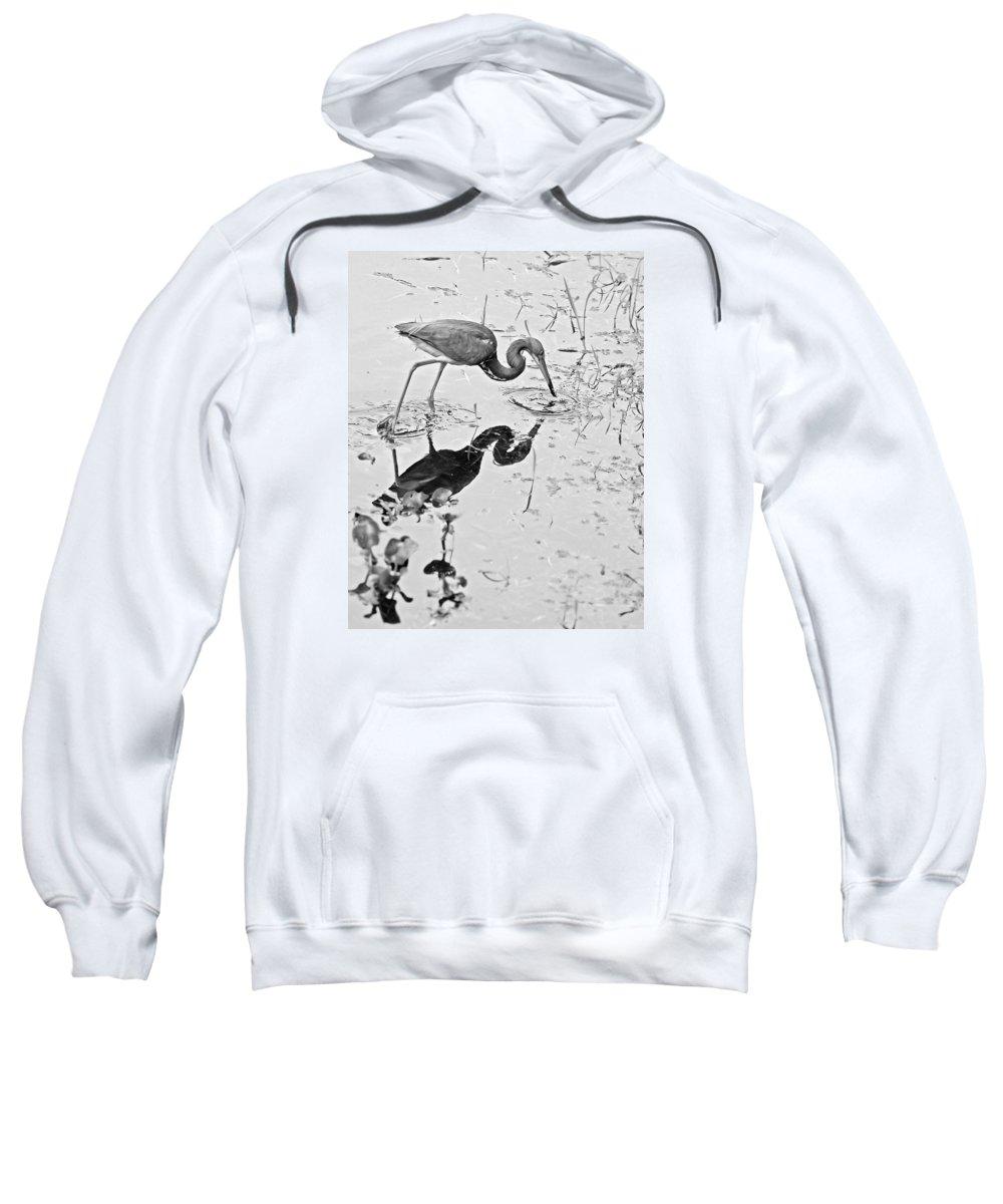 Tricolored Heron Sweatshirt featuring the photograph Tri-colored Meal Bw by Norman Johnson