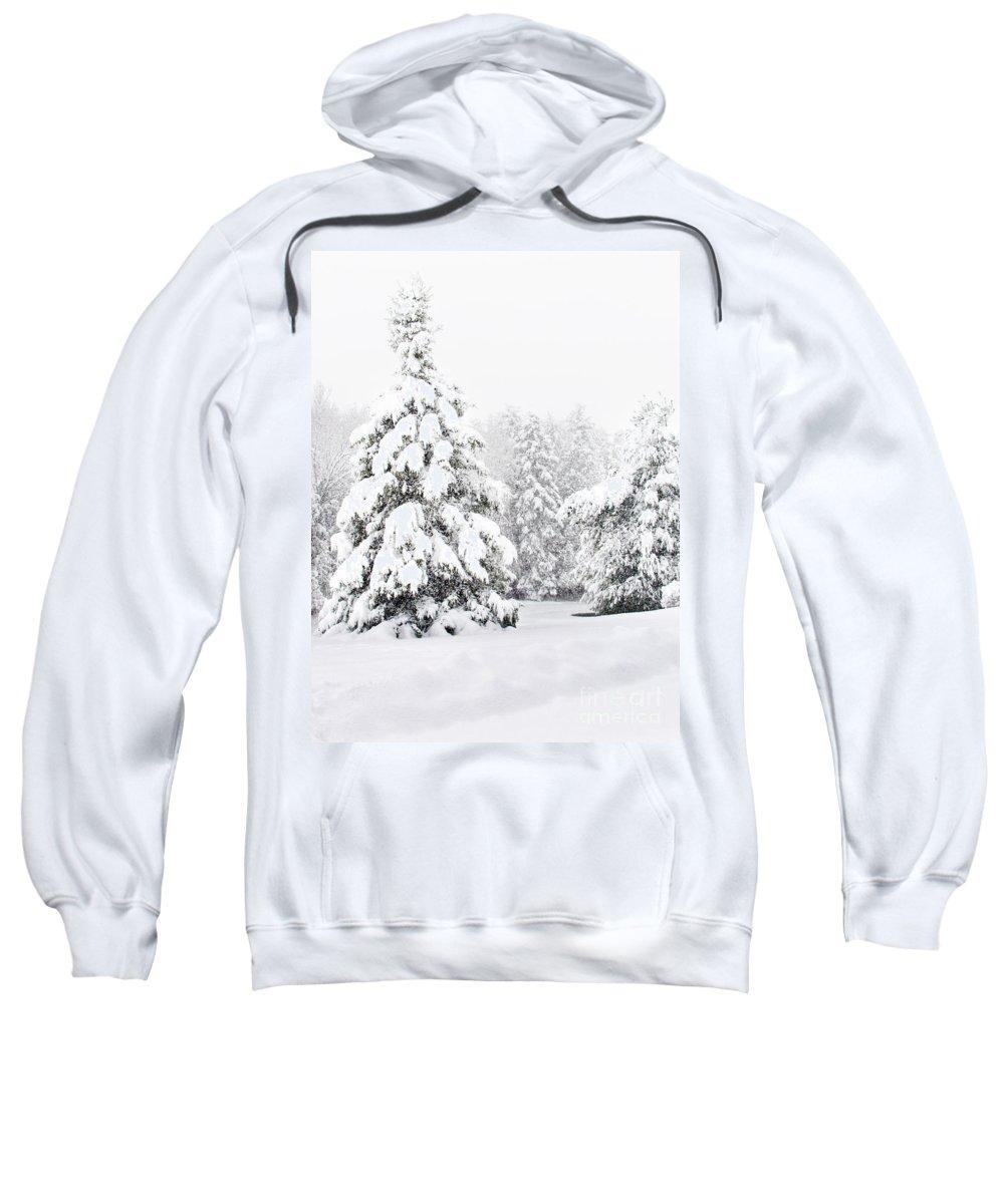 Winter Landscape Sweatshirt featuring the photograph Winter Landscape by Gwen Gibson