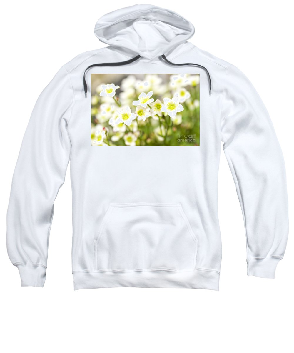 Flower Sweatshirt featuring the photograph Field Of White Blossoms by Sophie McAulay
