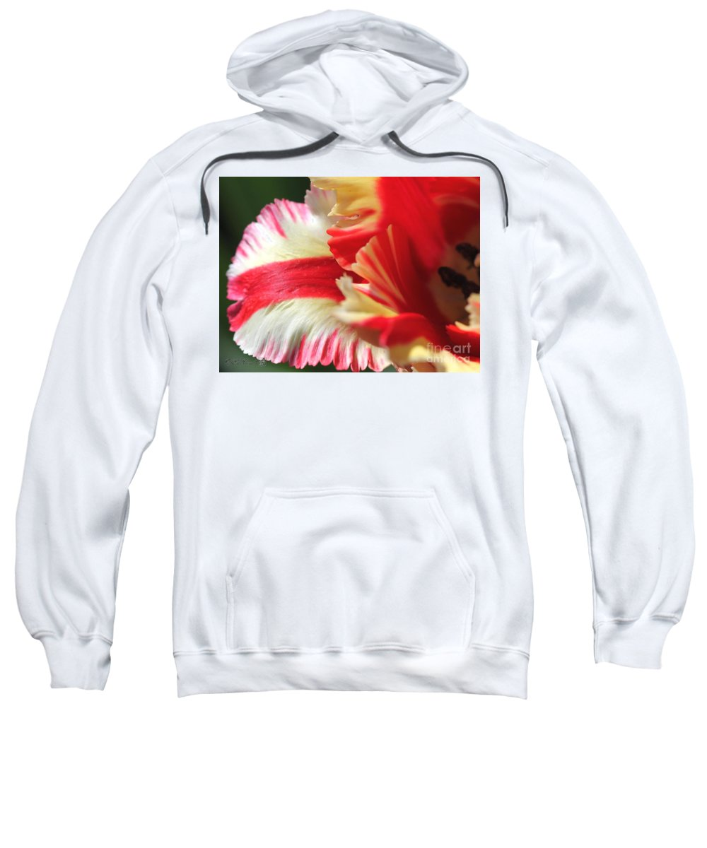 Mccombie Sweatshirt featuring the photograph Flaming Parrot Tulip by J McCombie