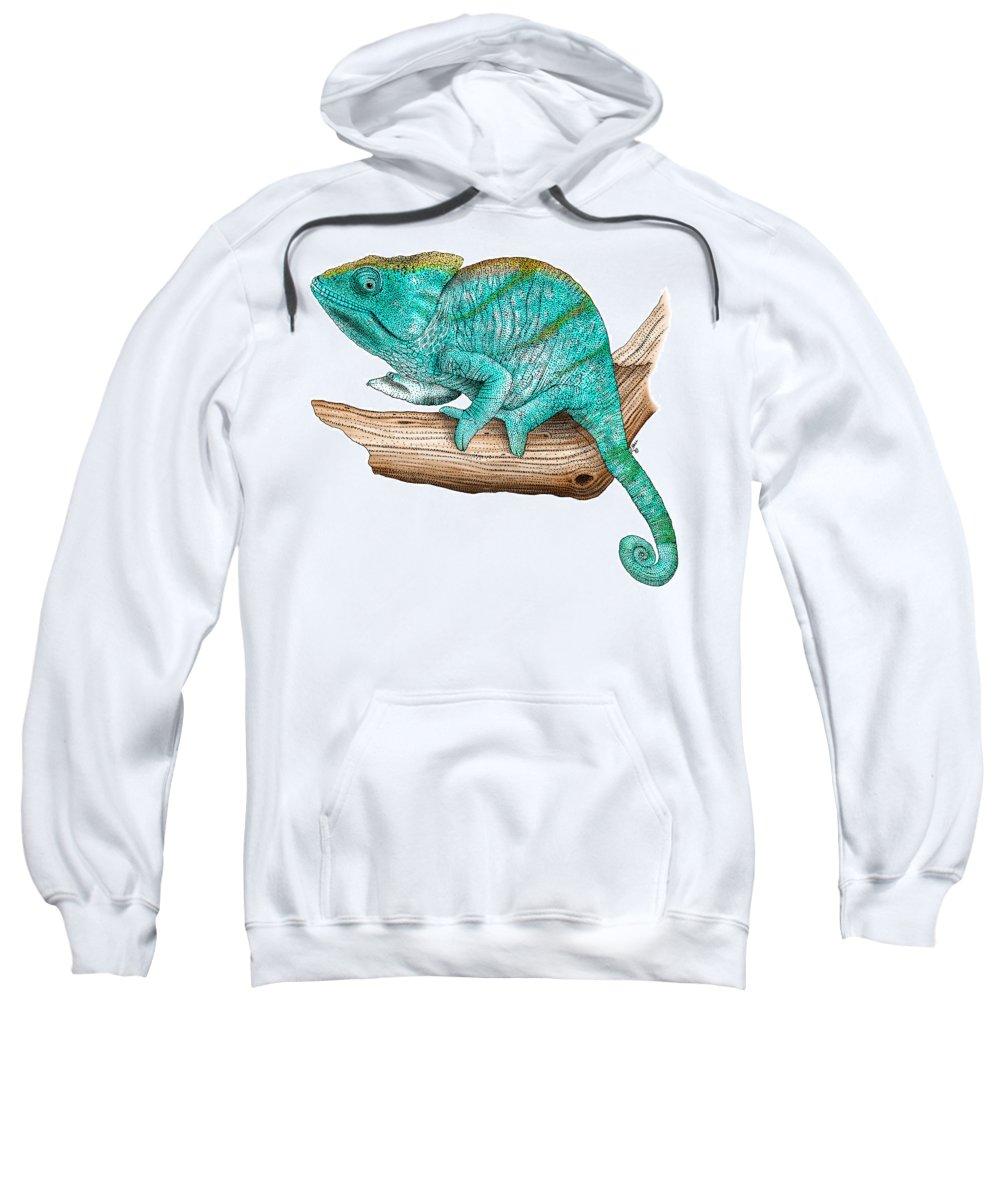 Lizard Sweatshirt featuring the photograph Parsons Chameleon by Roger Hall