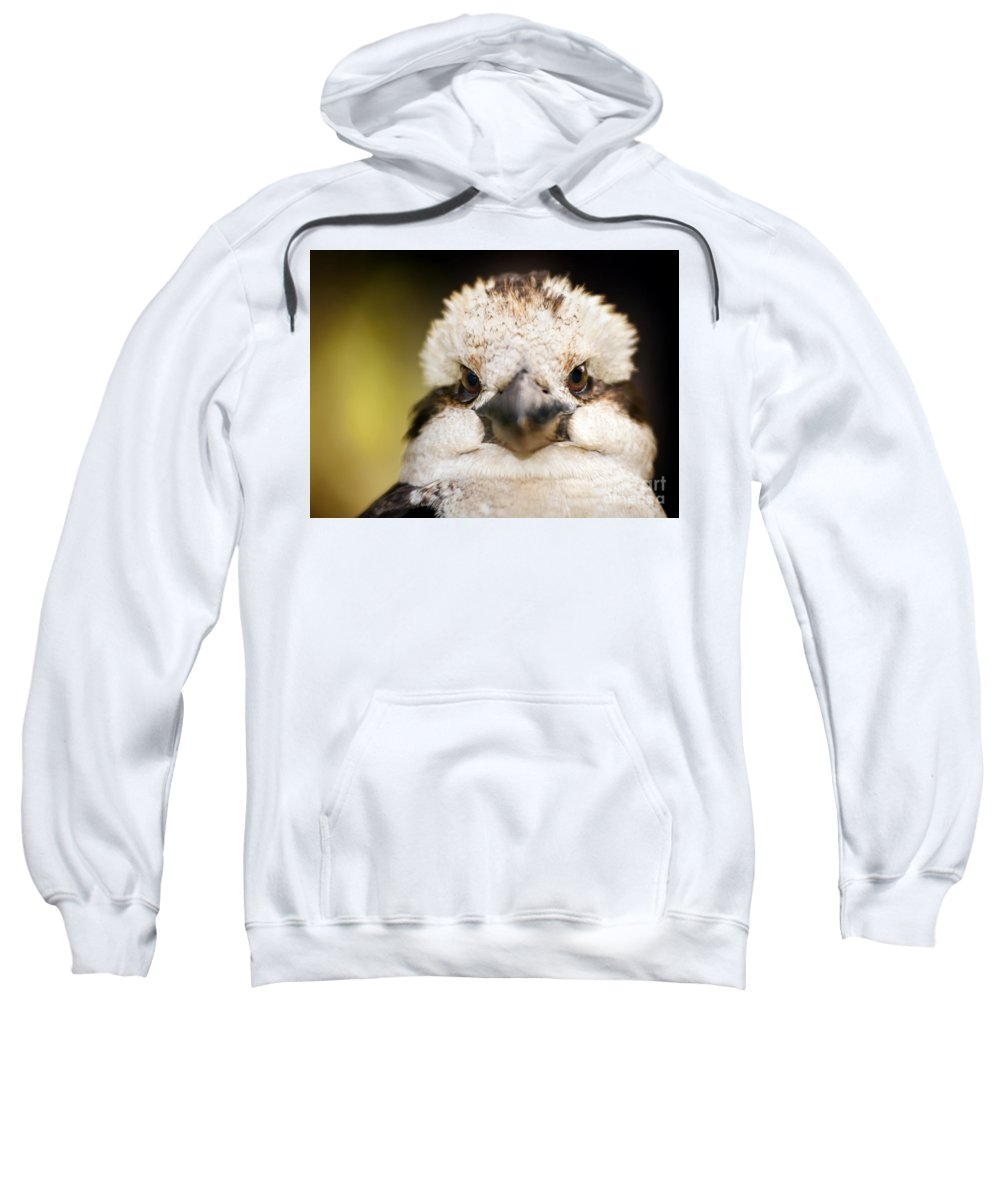 Australia Sweatshirt featuring the photograph Kookaburra by Tim Hester