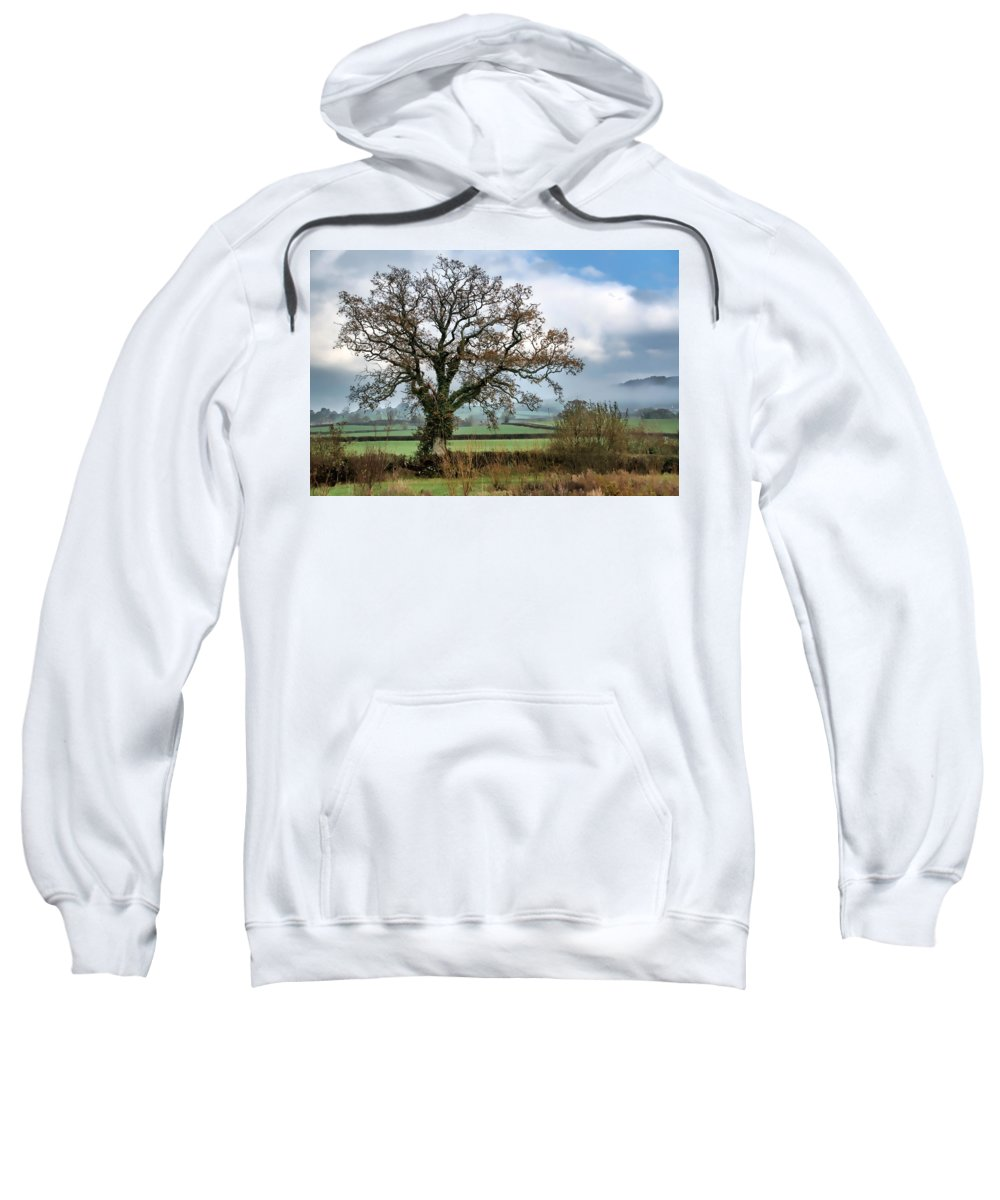 Lower-bruckland Sweatshirt featuring the photograph Lower Bruckland - Devon by Susie Peek