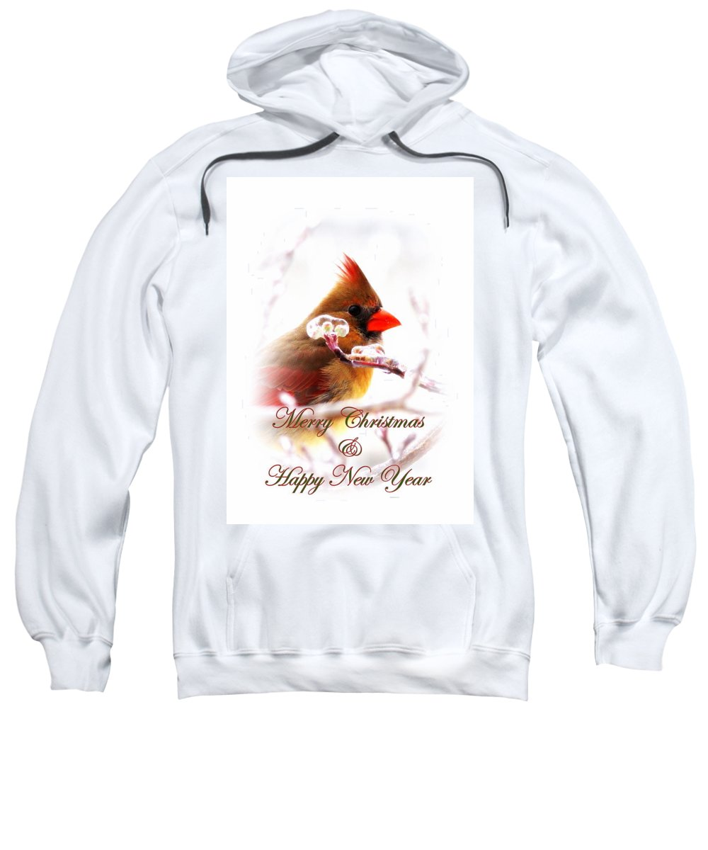 Christmas Sweatshirt featuring the photograph A Lady For Christmas - Cardinal Card by Travis Truelove