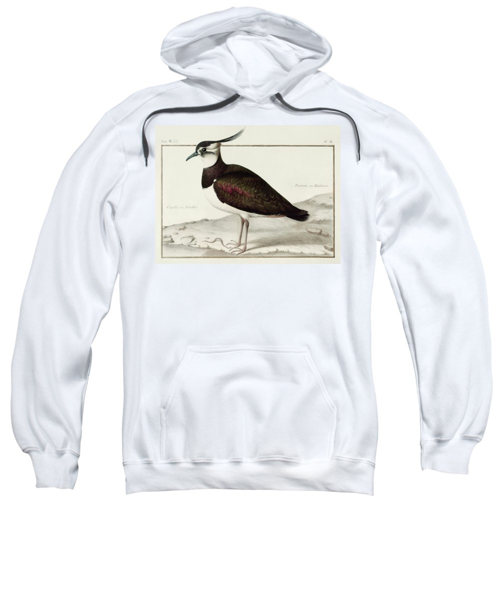 Lapwing Hooded Sweatshirts T-Shirts