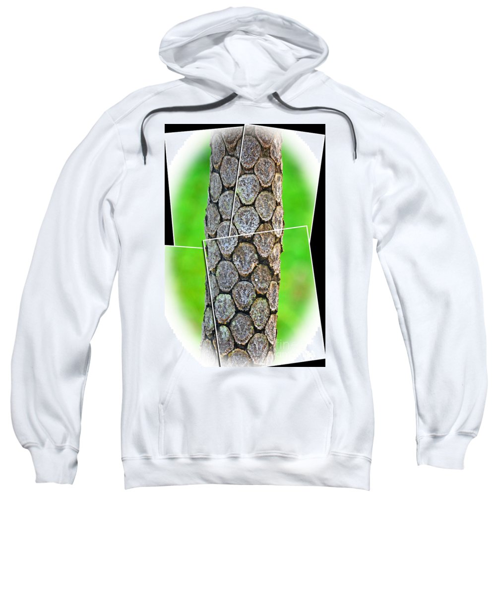 A Section Of A Tree Sweatshirt featuring the photograph A Section Of A Tree by Jim Fitzpatrick