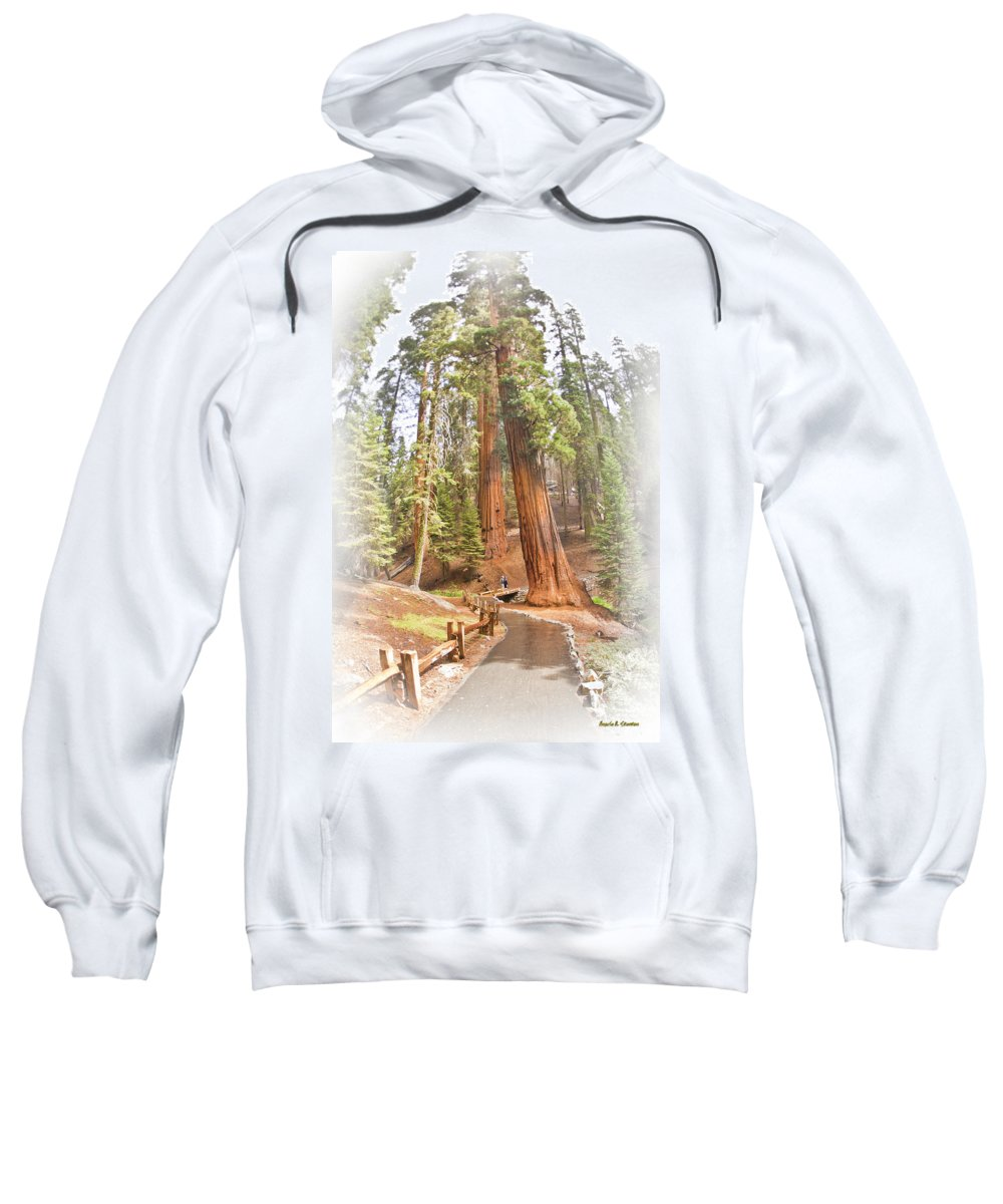 Giant Sweatshirt featuring the photograph A Walk Among The Giant Sequoias by Angela Stanton
