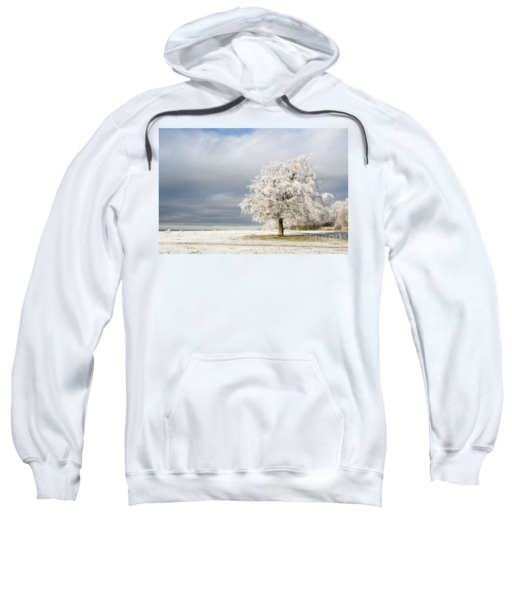 Britain Sweatshirt featuring the photograph A Winter's Morning by Anne Gilbert