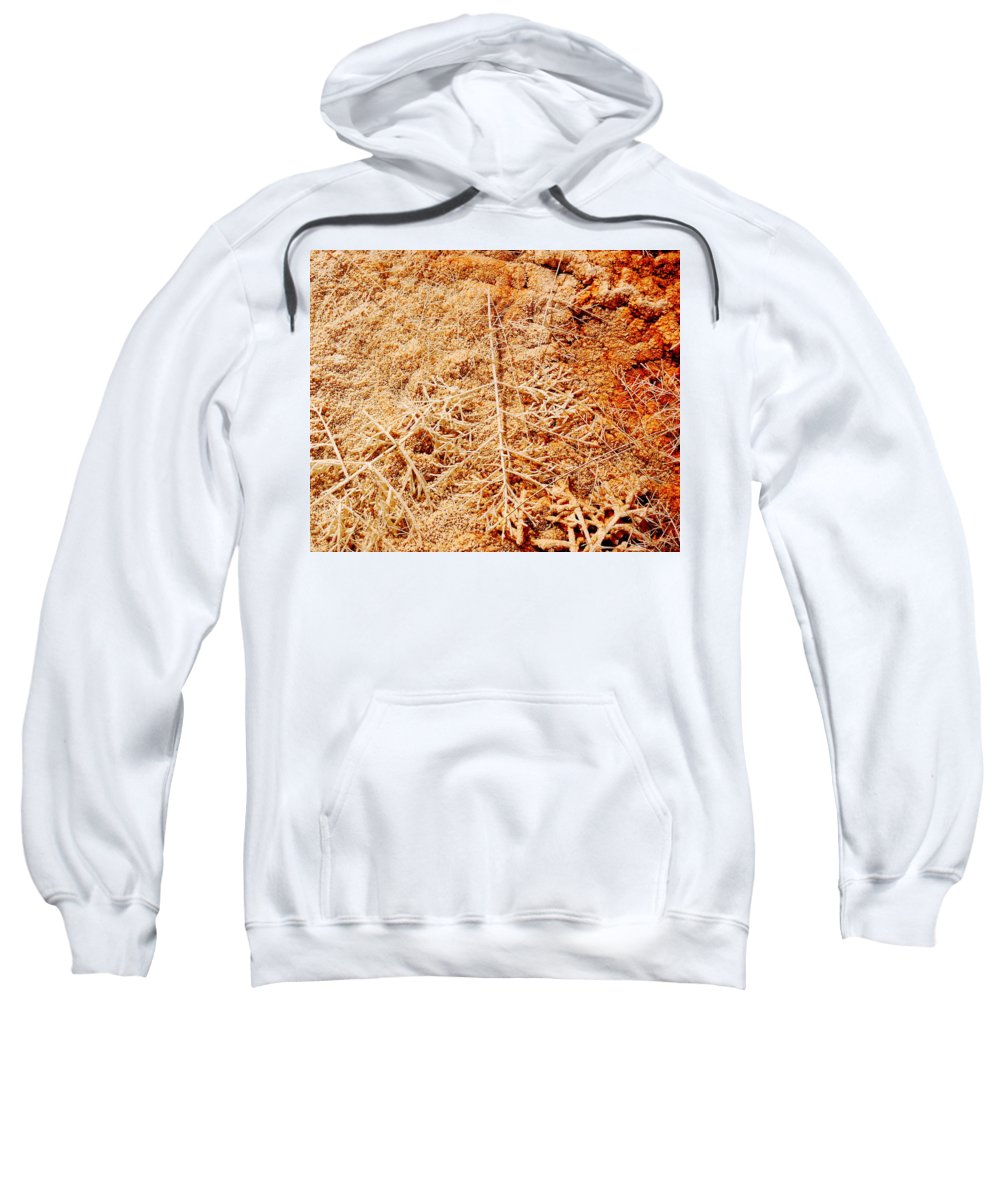 Mammoth Sweatshirt featuring the photograph Artifacts by Kathy Sampson