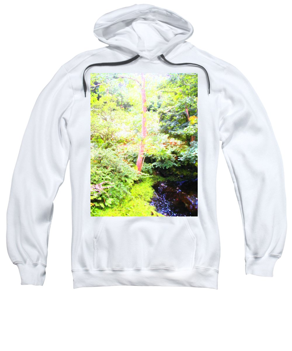 Expressive Sweatshirt featuring the photograph Atmosphere by Lenore Senior