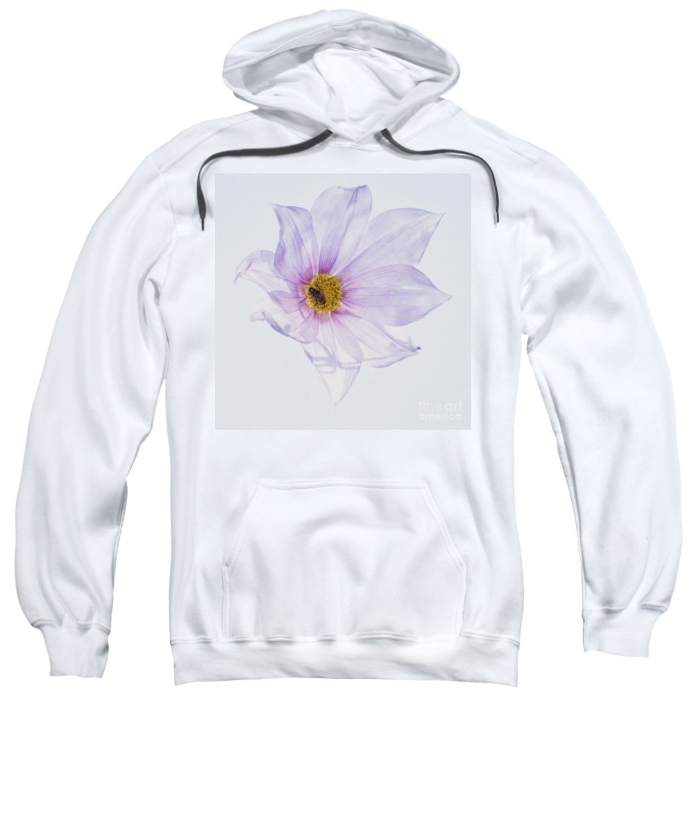 Delicate Flower Sweatshirt featuring the photograph Bee On Purple Flower by Carole Lloyd