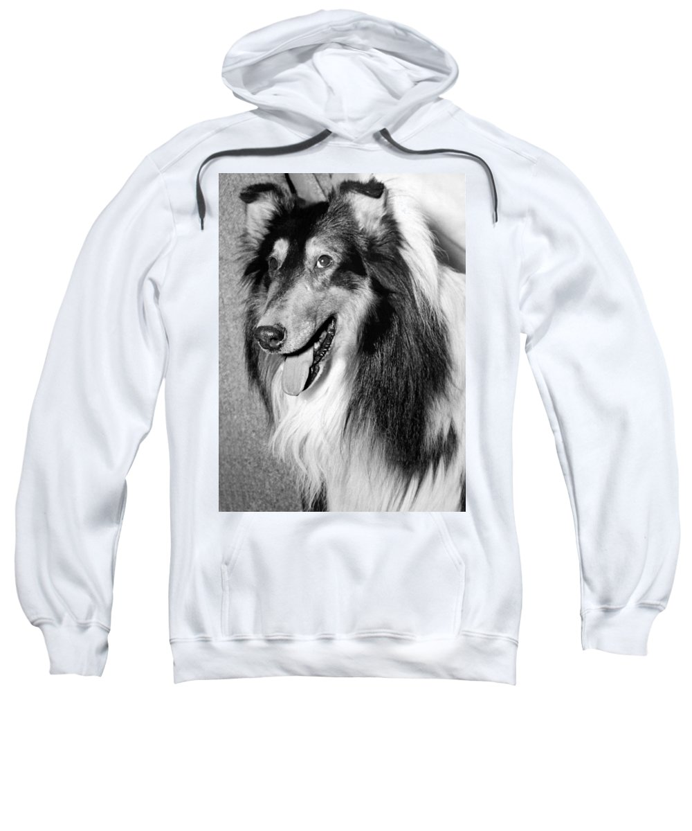 Breed Of Dog Sweatshirts
