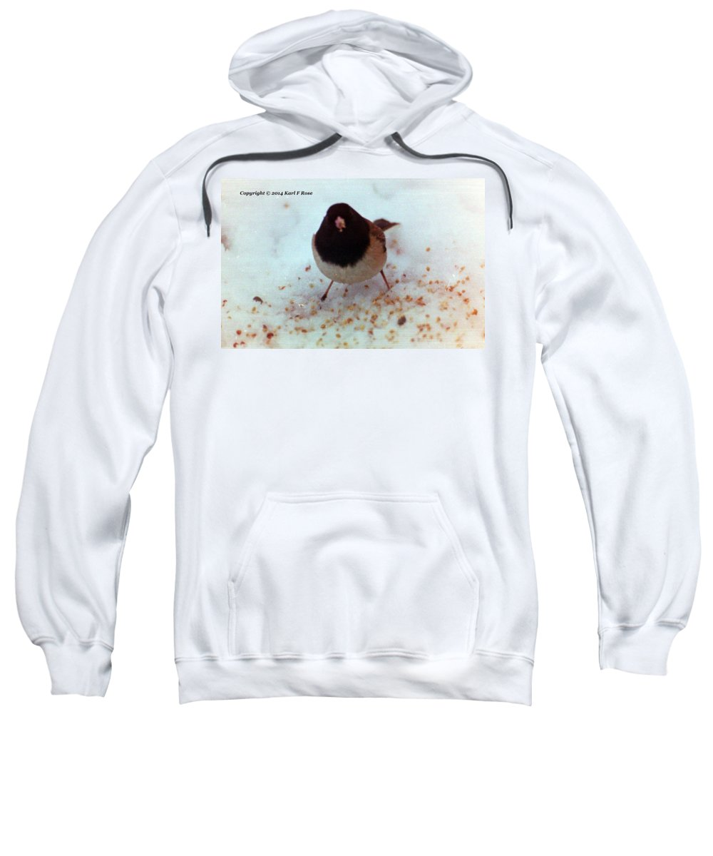 Birds Sweatshirt featuring the photograph Bird In Snow by Karl Rose