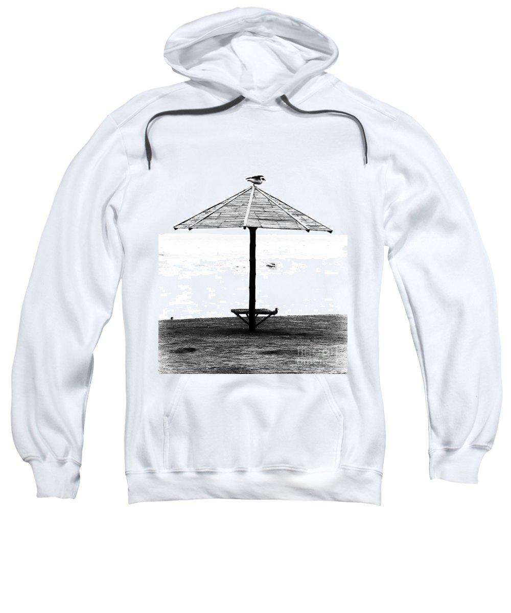 Bird Sweatshirt featuring the photograph Bird On Umbrella by Bruce Bain