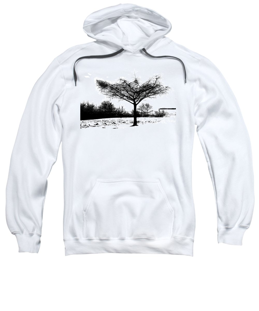 Trees Sweatshirt featuring the photograph Black And White by Debbie Nobile