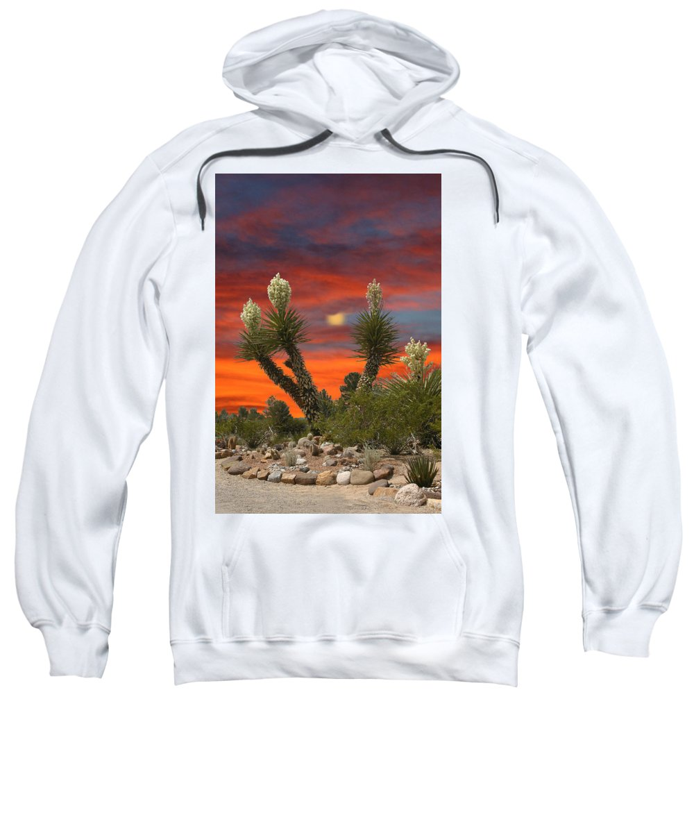 Framed Prints Of Yuccas In Bloom Sweatshirt featuring the photograph Full Blooming Yucca by Jack Pumphrey