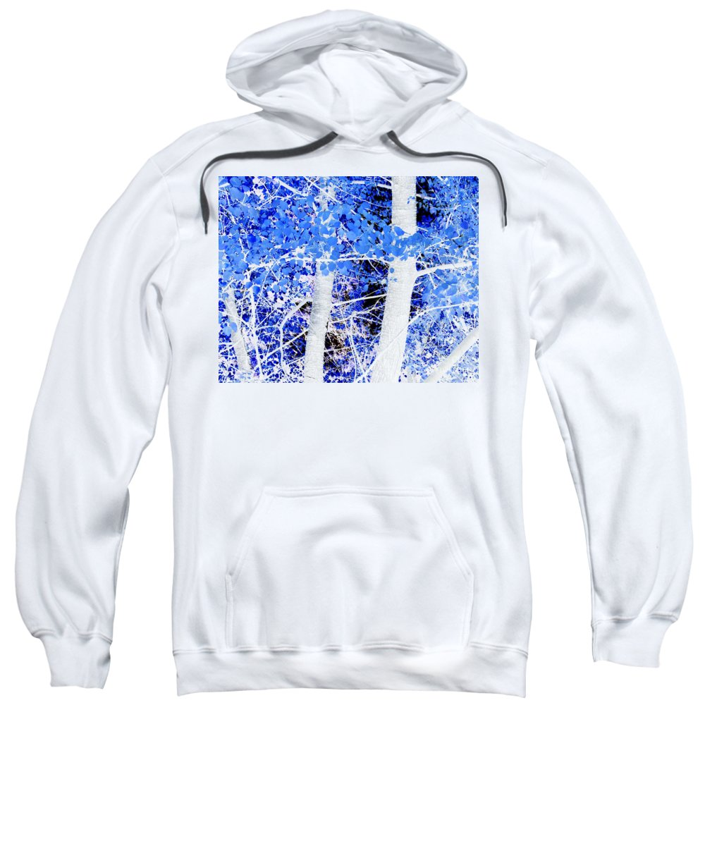 Blue Sweatshirt featuring the photograph Blue Birch Trees by Jim And Emily Bush