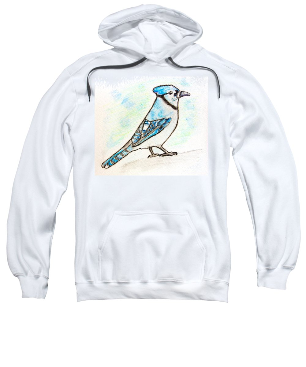 Watercolor Pencils Sweatshirt featuring the drawing Blue Jay by Pati Photography