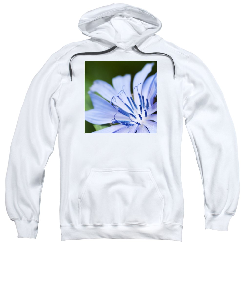 Festblues Sweatshirt featuring the photograph Blue Poetry.. by Nina Stavlund
