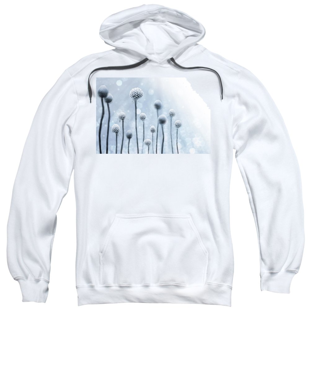 Abstract Sweatshirt featuring the photograph Blue Sunshine by Lisa Knechtel