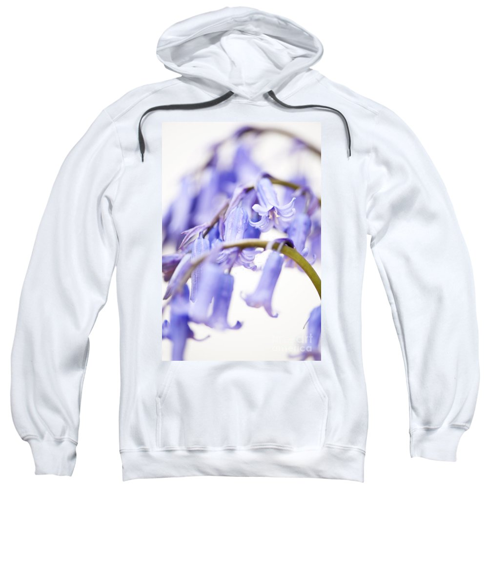 Abstract Sweatshirt featuring the photograph Bluebell Abstract II by Anne Gilbert