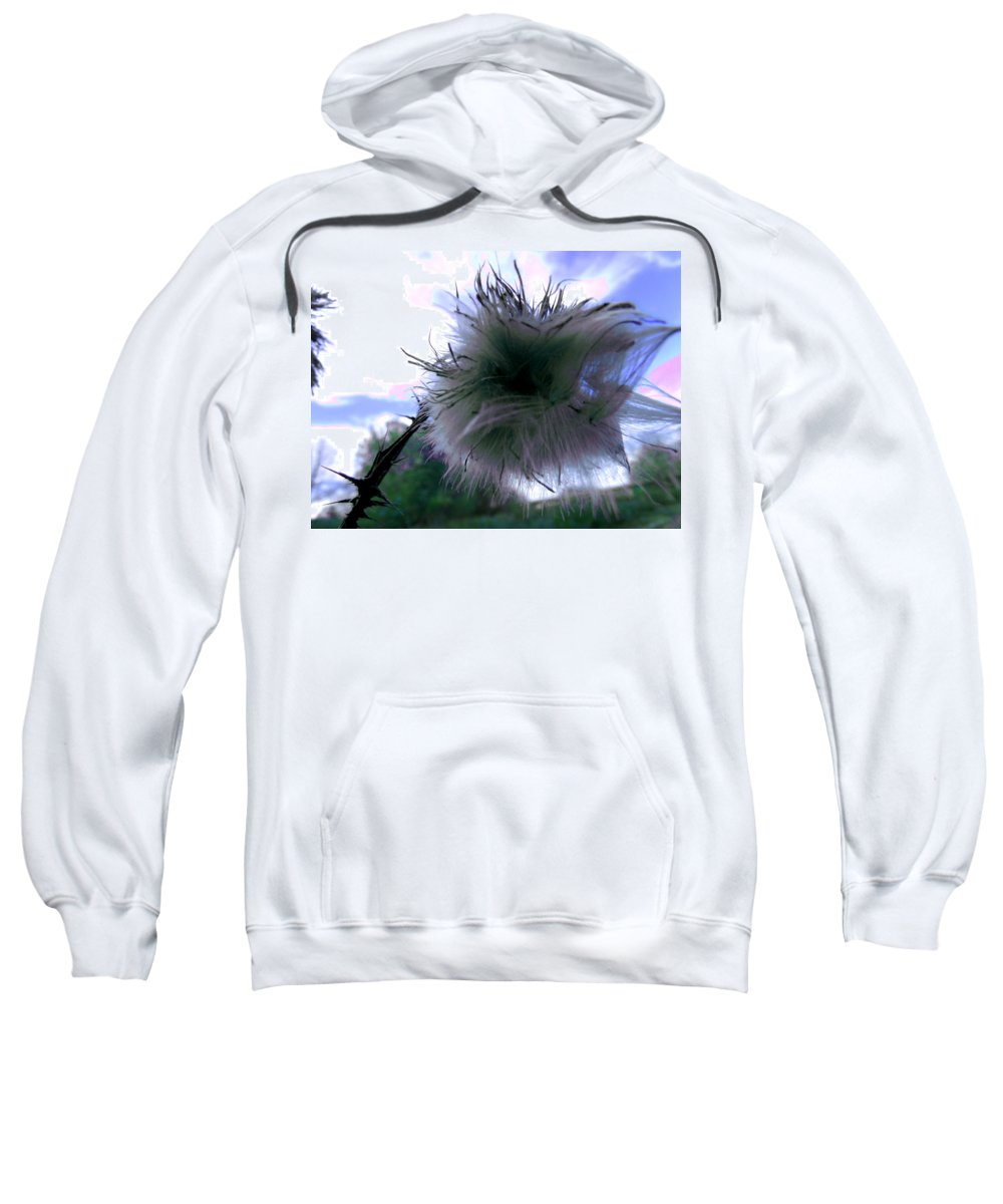 Thistle Sweatshirt featuring the photograph Bottomland Thistle by Erin Rednour